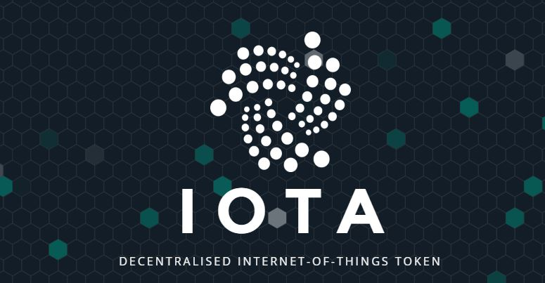 iota developer launched, tangle, patient